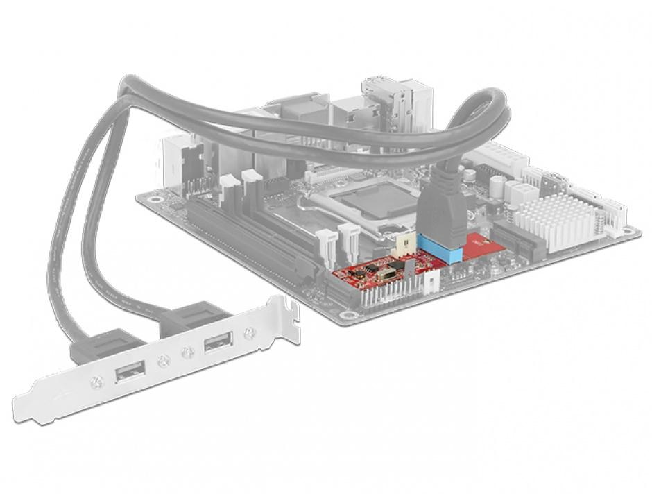 Imagine Convertor M.2 Key B+M la 1 x Pin Header USB 3.0, Delock 62842-6