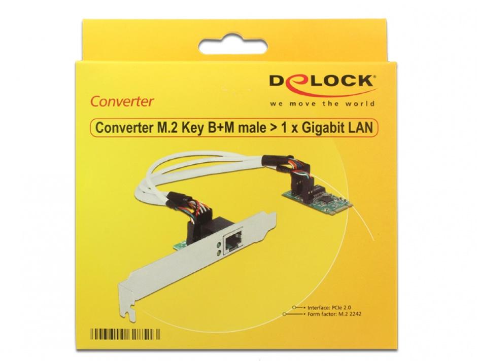 Imagine Convertor M.2 Key B+M male la 1 x Gigabit LAN Low Profile Form Factor, Delock 62851-1
