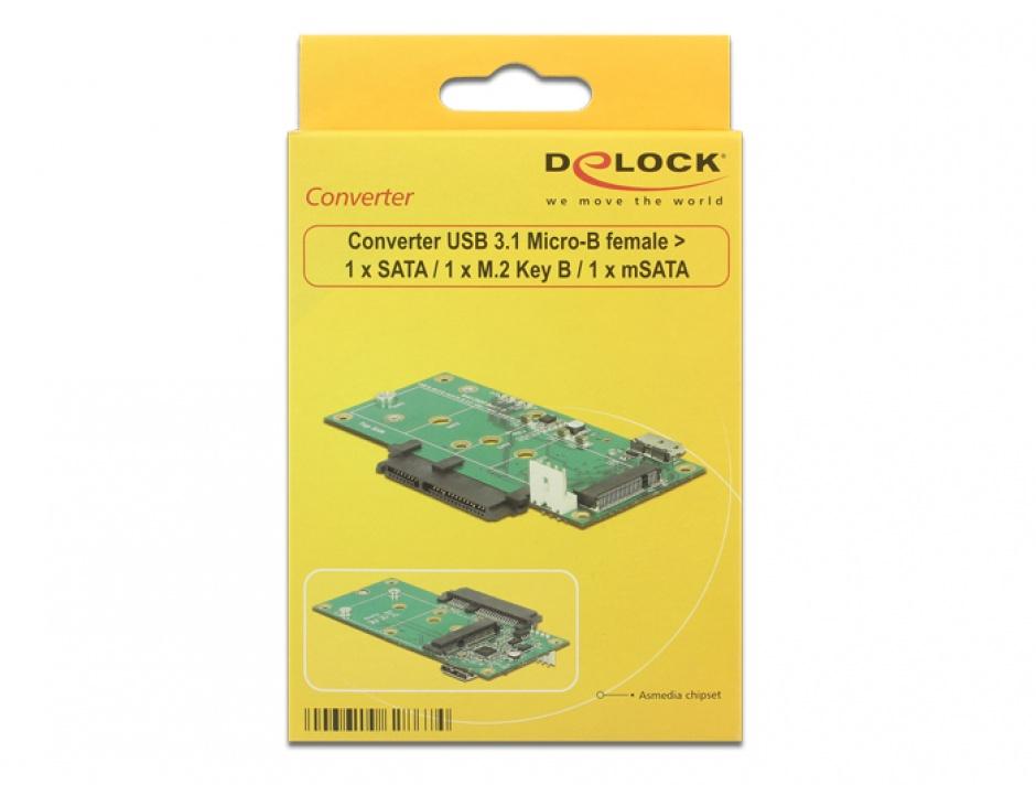 Imagine Convertor micro-B USB 3.1 la 1 x SATA / 1 x M.2 Key B / 1 x mSATA, Delock 62867-6