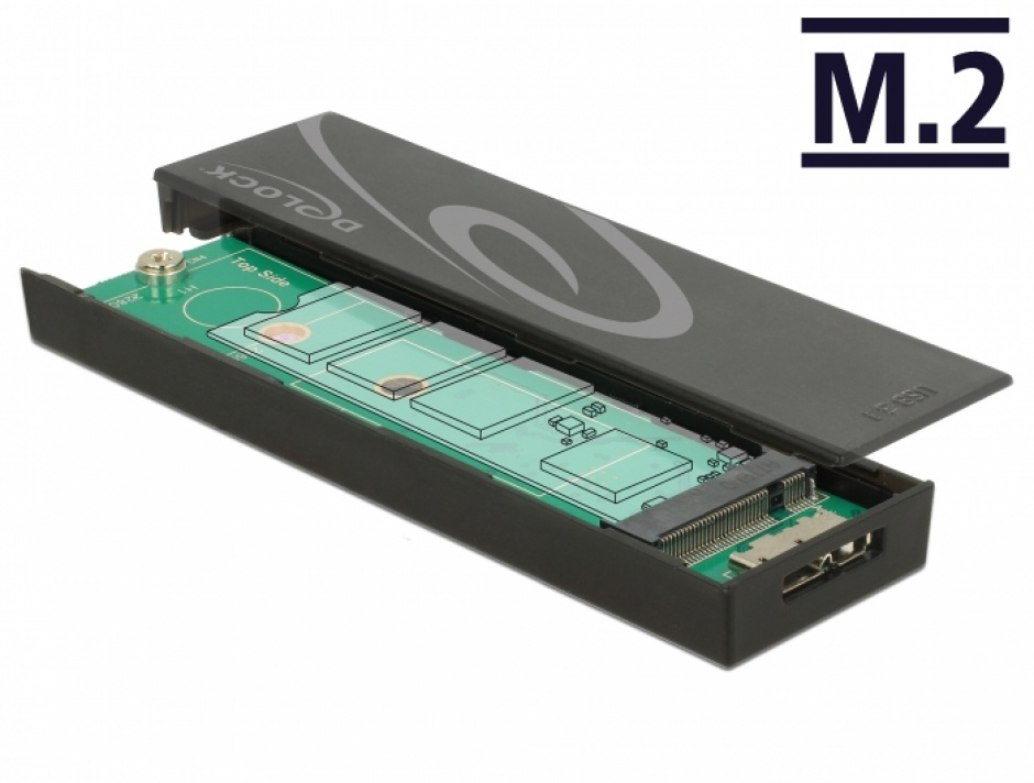 Imagine Rack extern toolless M.2 SSD 42/60/80 mm la micro-B USB 3.1 Gen 2, Delock 42598