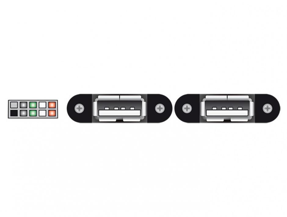 Imagine Cablu USB 2.0 pin header female 2.00 mm 10 pini la 2 x USB 2.0-A 25cm, Delock 84832-2