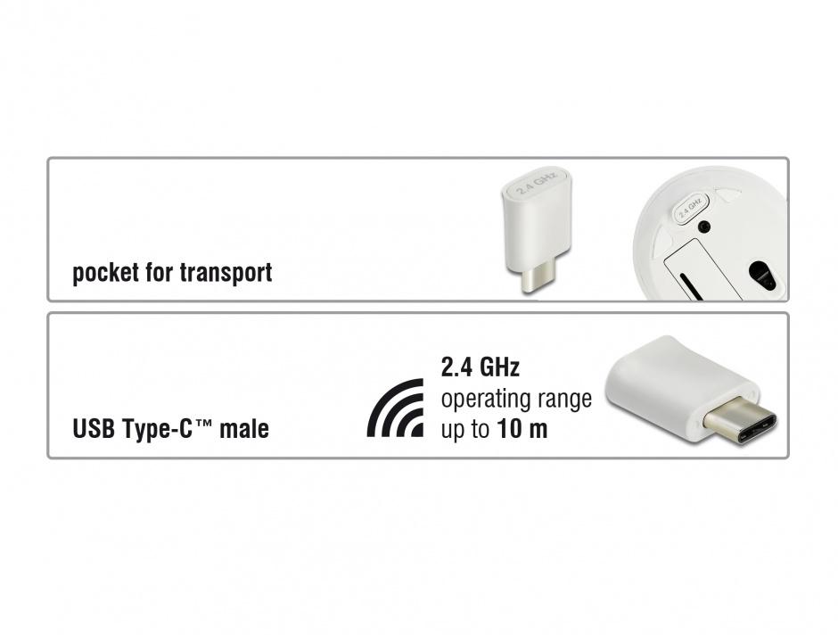 Imagine Mouse mini optic wireless USB-C Alb, Delock 12668