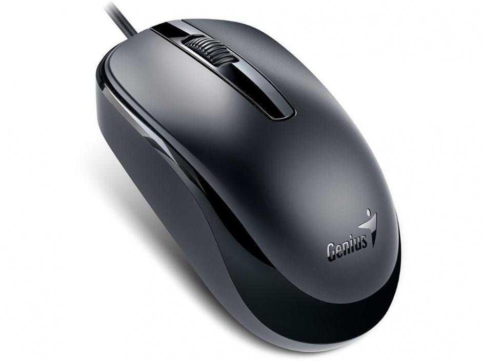 Imagine Mouse Genius DX-120 Black USB, Genius
