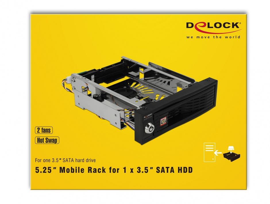 """Imagine Rack intern 5.25"""" pentru HDD 3.5"""" SATA, Delock 47199"""
