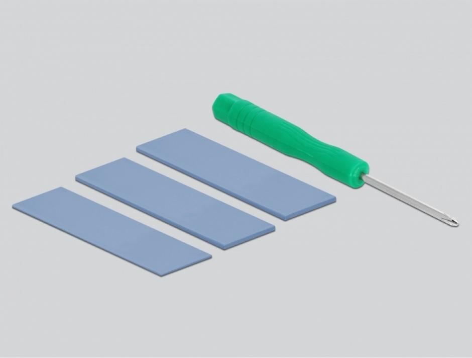 Imagine Rack extern USB-C + USB-A la M.2 NVME PCIe SSD, Delock 42616