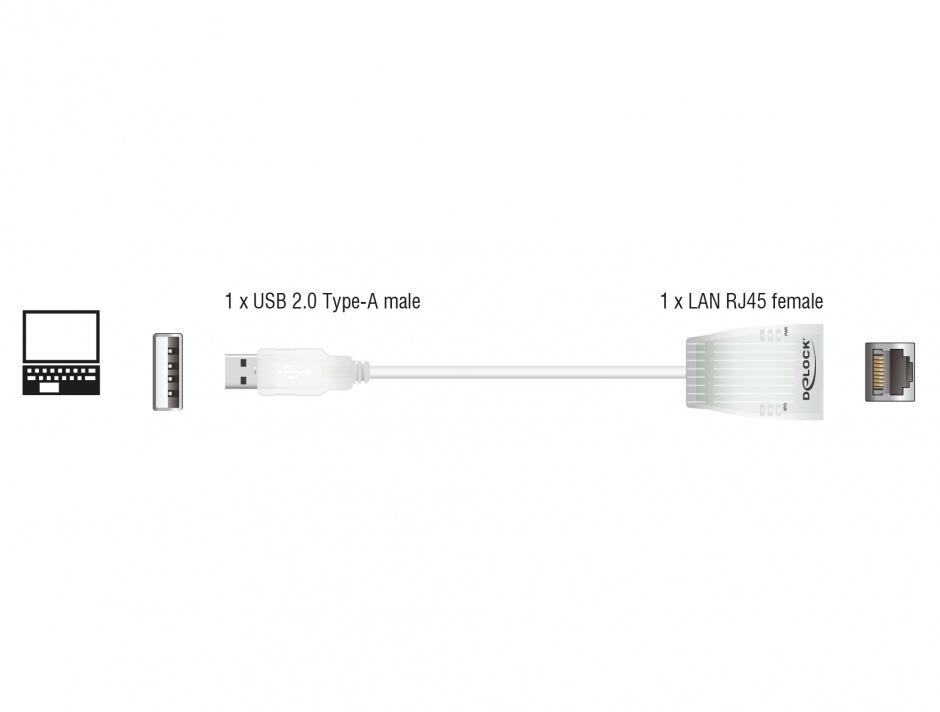 Imagine Placa de retea USB 2.0 la retea 10/100 Mbps, Delock 61147