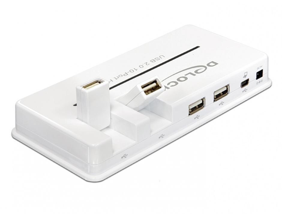 Imagine Hub USB 2.0 10 porturi, Delock 61857