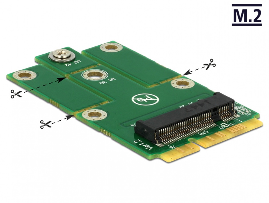 Imagine Adaptor mini PCIe la M.2 NGFF key B, Delock 62654