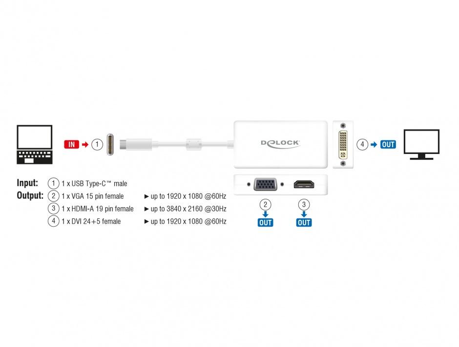 Imagine Adaptor USB-C la VGA / HDMI / DVI T-M alb, Delock 63924