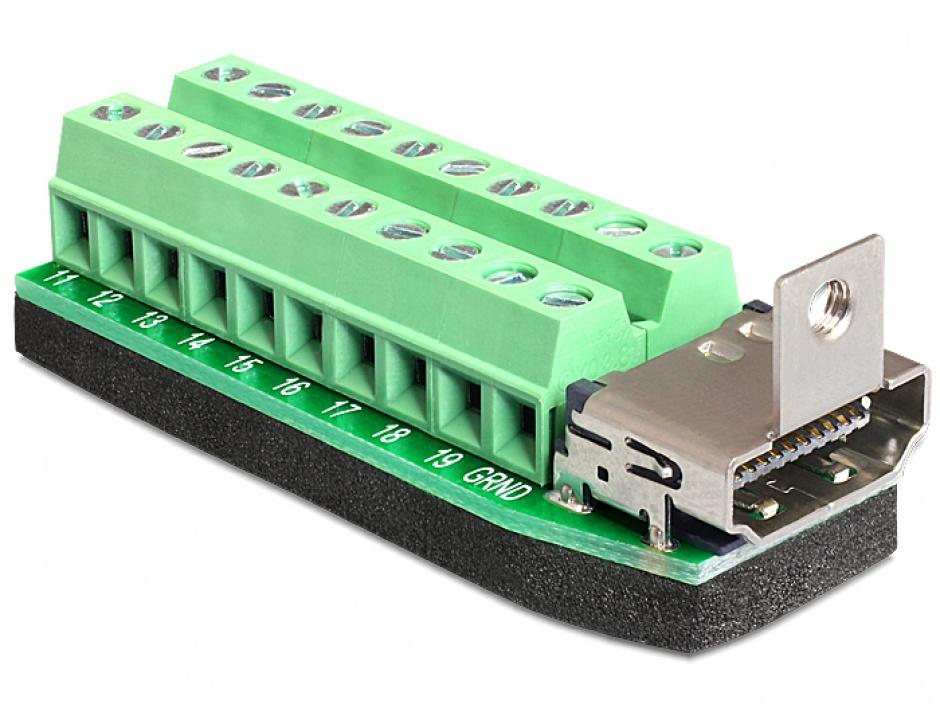 Imagine Adaptor HDMI mama la bloc terminal 20 pini, Delock 65168