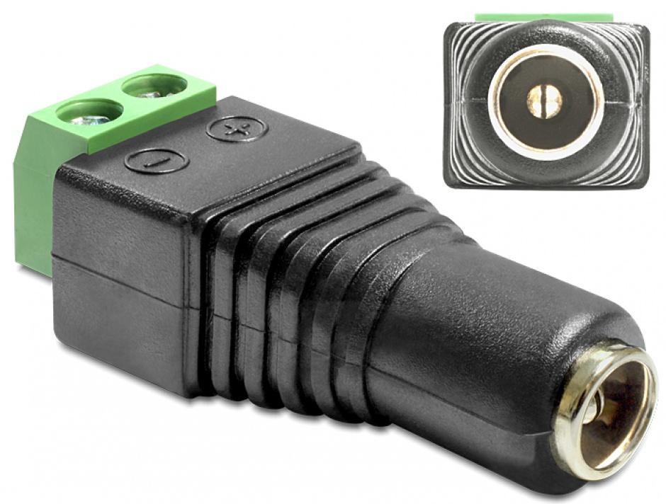 Imagine Adaptor DC 2.1 x 5.5 mm Mama la Bloc Terminal 2 pini, Delock 65421