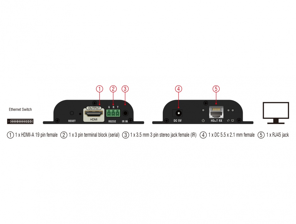 Imagine Receiver HDMI pentru video over IP, Delock 65944