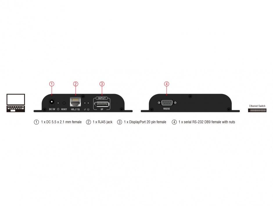 Imagine Transmitter DisplayPort pentru video over IP, Delock 65945