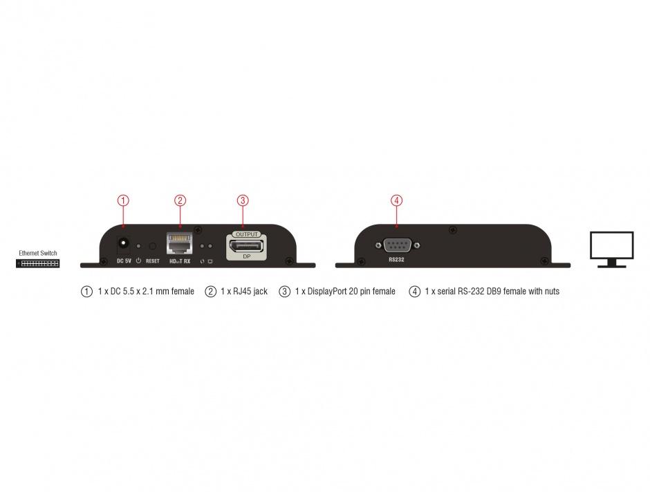 Imagine Receiver DisplayPort pentru video over IP, Delock 65946
