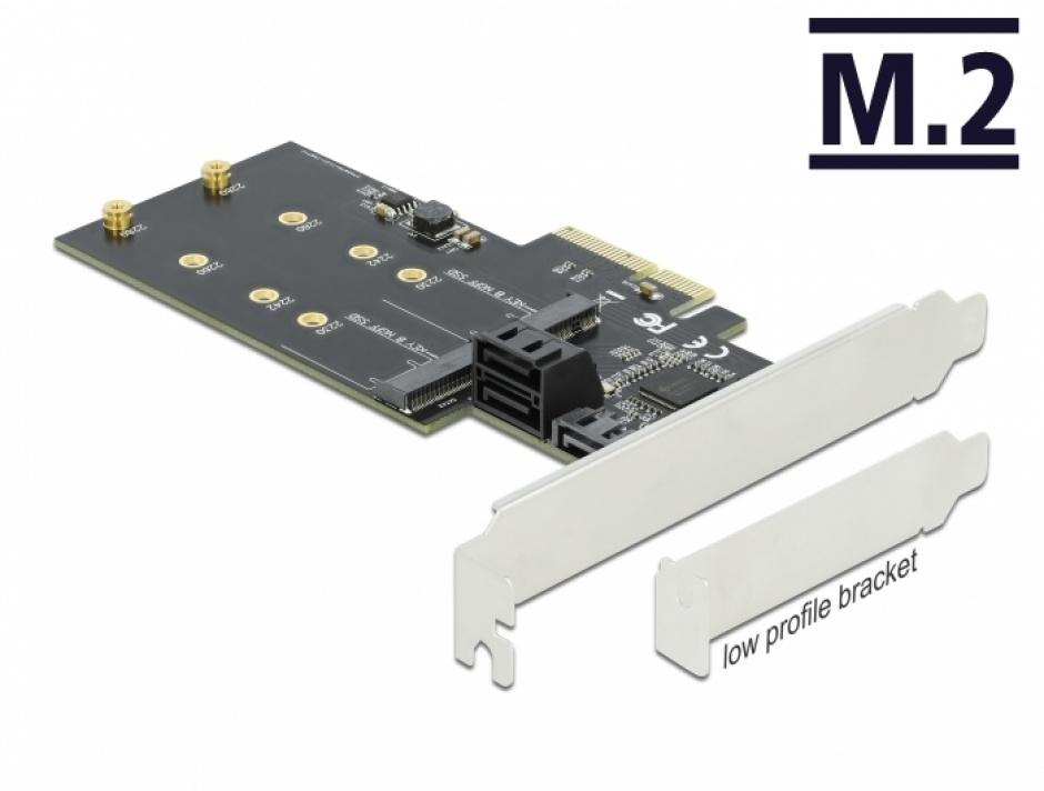 Imagine PCI Express cu 3 x SATA III + 2 x M.2 Key B, Delock 90499