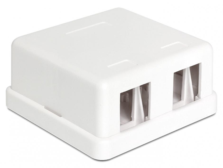 Imagine Carcasa Keystone perete 2 Porturi alb, Delock 86207