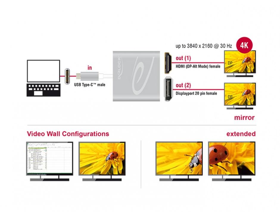 Imagine Multiplicator USB-C (DP Alt Mode) la 1 x HDMI + 1 x Displayport 4K 30 Hz, Delock 87716