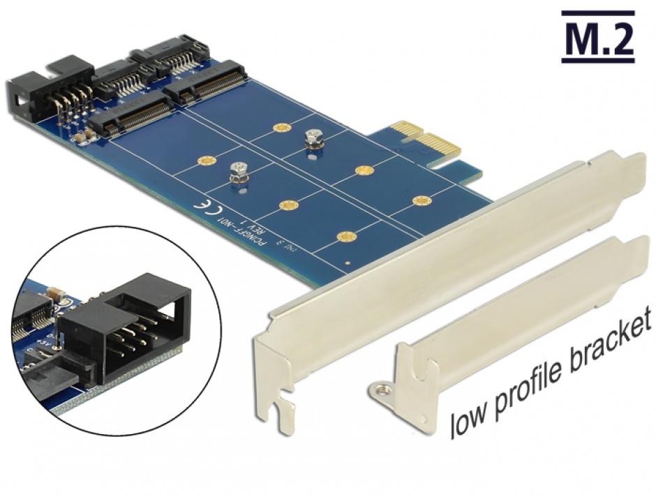 Imagine PCI Express cu 2 x M.2 NGFF key B, Delock 89374