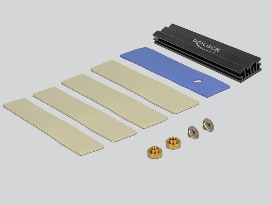 Imagine PCI Express la 1 slot M.2 Key B + 1 slot NVMe M.2 Key M, Delock 89630