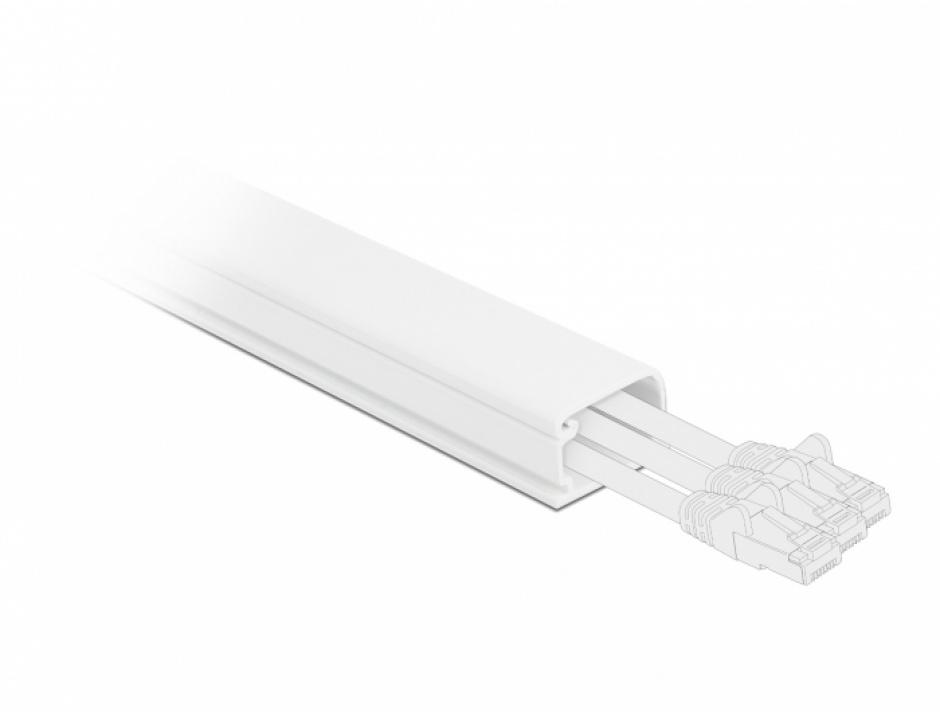 Imagine Canal cablu PVC 35 x 20 mm - 1m Alb, Delock 20722