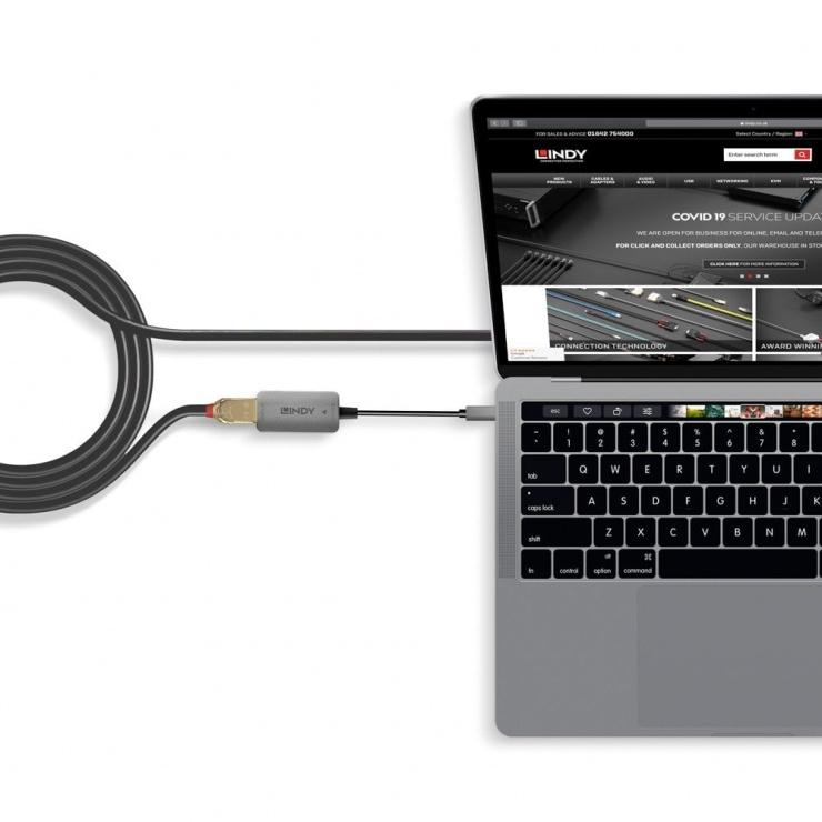 Imagine Adaptor USB 3.1 Type C la Displayport 4K@60Hz T-M, Lindy L43286