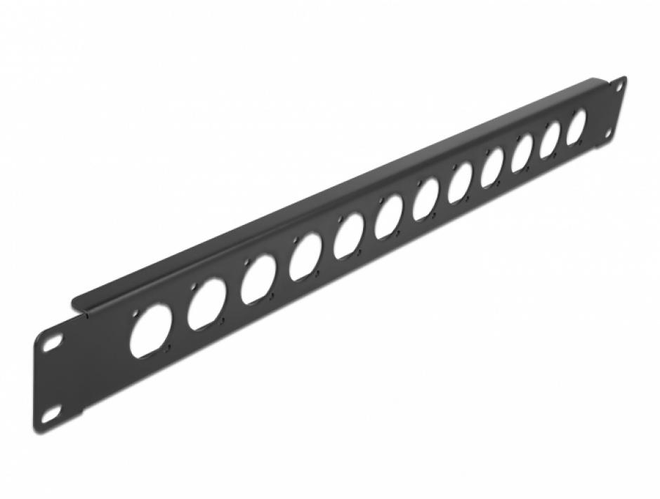 """Imagine Patch panel 10"""" pentru 12 x module D-type, Delock 86500"""