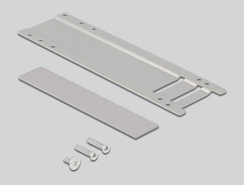 Imagine Mobile Rack PCI Express cu 1 x M.2 NMVe SSD, Delock 47003