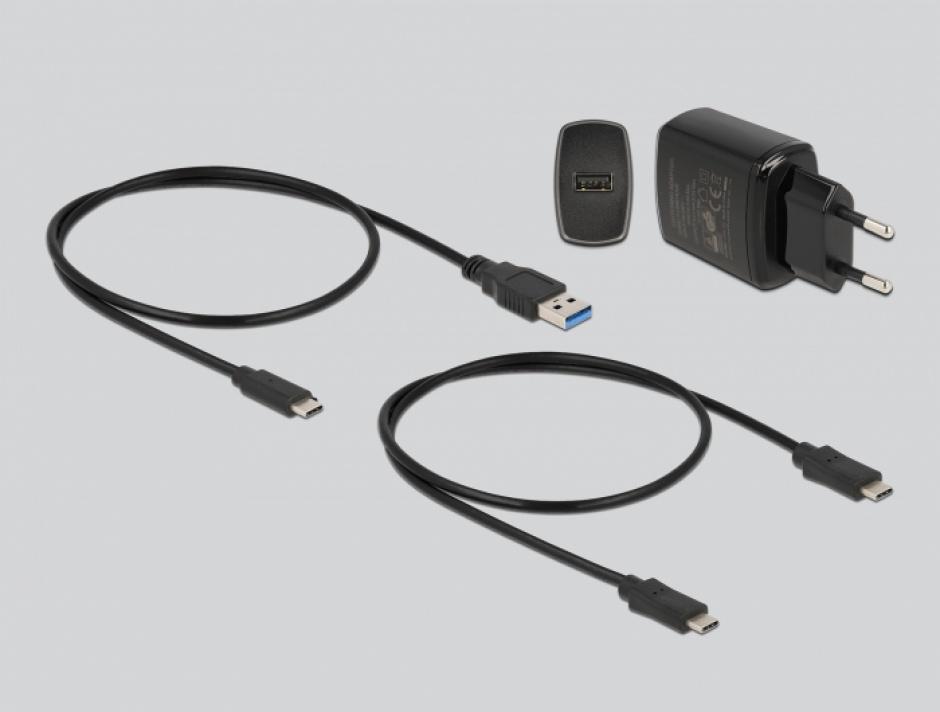 Imagine Docking station USB 3.2 Gen 2-C la 2 x M.2 SATA SSD cu functie de clona, Delock 63334