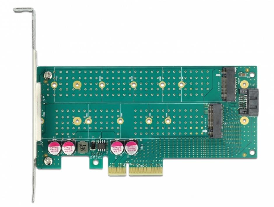 Imagine PCI Express cu 1 x M.2 Key B + 1 x NVMe M.2 Key M LPFF, Delock 89047