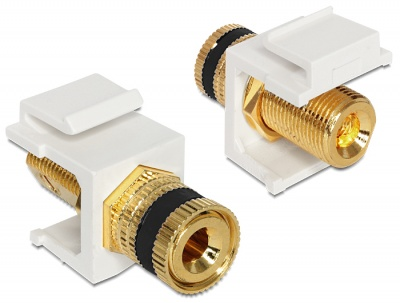 Imagine Modul Keystone Cablu Difuzor, Delock 86303