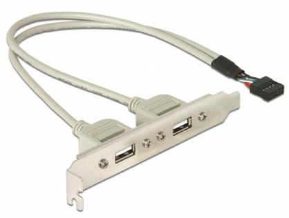 Bracket cu 2 porturi USB 2.0, Delock 71000