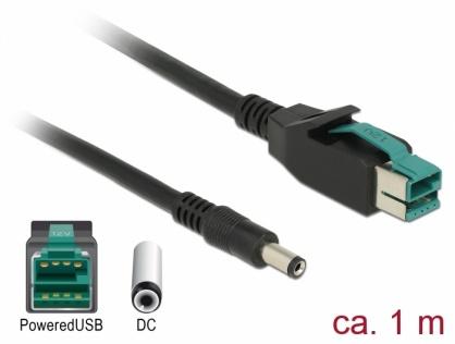 Cablu PoweredUSB 12 V la DC 5.5 x 2.1 mm 1m pentru POS/terminale, Delock 85497