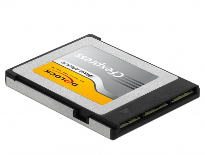 Card memorie CFexpress 64 GB, Delock 54064