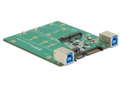 Convertor SATA / USB 3.1-B la M.2 / mSATA, Delock 62732