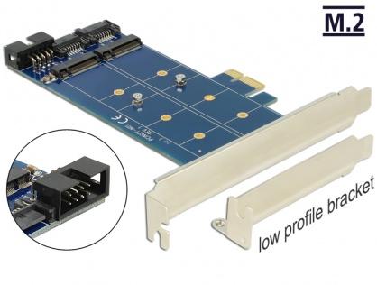 PCI Express cu 2 x M.2 NGFF key B, Delock 89374